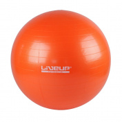 Anti-Burst Exercise Gym Ball - Heavy Duty Swiss Ball with Hand Pump 65 & 75cm Sizes