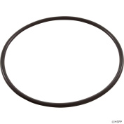 Pentair U9-369 Tank Flange O-Ring Replacement Sta-Rite Pool and Spa Filter and Valve
