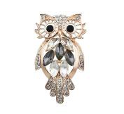 superior creative Unique owl Brooch Luxury Rhinestone crystal breastpin Women Wedding Party Dress Gifts