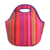 bismarckbeer Fashion Lunch Tote Picnic Bag Lunch Box Cooler Bag Food Storage