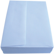 Leader A6 Envelopes (12cm x 17cm ) 50/Pkg Peggable