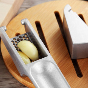 Aluminium Alloy Ginger Garlic Presses Crusher Chopper Grinding Kitchen Supplies