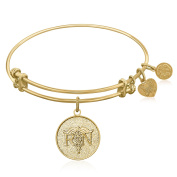 "Yellow Gold-Plated Brass Expandable Bangle with ""Registered Nurse Care Compassion"