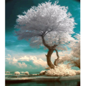DIY 5D Diamond Painting by Number Kits, Crystal Rhinestone Embroidery Pictures Arts Craft for Home Wall Decor Gift,A White tree in The Sea
