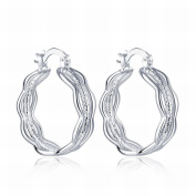 MOMO a Pair of Personality Art Wind Ear Buckle Ms. / Stainless Steel / Anti-allergy / Silver Flashing / Small and Exquisite / Zirconia Made