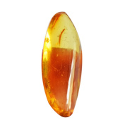 Top Quality Transparent 6 Cts Yellow Baltic Sea Amber Cabochon For Making Jewellery,Amber Suppliers AG-6436