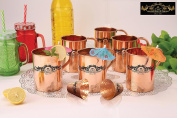Crockery wala and Company Premium Set of 6 Copper Pipe plain Mugs with two copper shot mugs made of 99.5% Pure Solid Copper, Great for cold drinks and for kitchen and bar purposes
