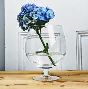 Transparent Large Glass Cognac Brandy 24 cm | Decorative Container | Jar 1.5 L