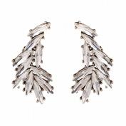 Red Rhinestone Earrings Wedding Jewellery Photo Studio Accessories , white