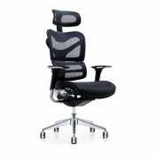 Poly and Bark Inverness Ergonomic Office Chair in Black