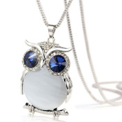 Necklaces, SamMoSon Women Owl Pendant Diamond Sweater Chain Long Necklace Jewellery