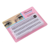 Individual False 60 Stand Eyelashes Fake SOMESUN Premium Corner Flare Cluster Lashes