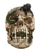 Astonishing Skull Decor