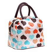 Lunch Box Portable insulated Picnic Lunch Bag Zipper Organiser