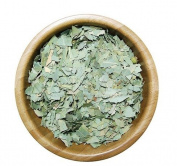 SPECCHIASOL – Eucalyptus Leaves T.T. 1 kg Balsamic, fluidificante, espettorante and Antibacterial