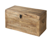 Stein World Jace Accent Trunk in Reclaimed 12557