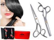 BeautyTrack Professional Hairdressing Scissors - Thinning Scissors - Scissors Salon - Hairdressing Hair Cutting Scissors - German Stainless Steel - Silver - Ideal For Gift - Red Case