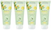 Logona Energy Body Lotion Lemon and Ginger 4x200ml