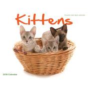 2018 Kittens Desk Calendar, Kittens by Wyman Publishing