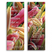The God of All Comfort - Bible Cards - Pack of 25