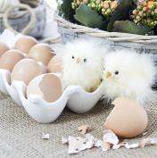 ceramic egg tray kitchen buy online from fishpond au