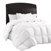Queen Comforter Duvet Insert, Quilted White Comforter Set with Corner Tabs, Hypoallergenic & Reversible, Box Stitched Plush Goose Down Alternative Fill, Brushed Microfiber by Sable