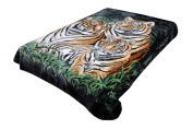 Korean Solaron Super High Quality Thick Mink Blanket