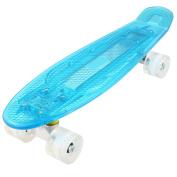 WeSkate Cruiser Skateboards 60cm LED Light-Up Penny Style Complete Skateboard Outdoor For Teens Kids Age 4 Up