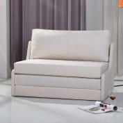 Gold Sparrow ADC-ALB-CLS-NMX-BEI Albany Convertible Loveseat Sleeper, Beige
