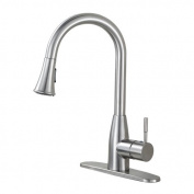 Luxier Pull Down Single Handle Kitchen Faucet
