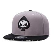 XY Fancy Fashion Skull Embroidery Snapback Hip Hop Cap Flat Brim Baseball Hat Grey