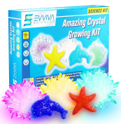 Crystal Growing Kit For Kids – Amazing Science Kit To Make Crystal Rocks and Gems – Supplies For 5 Large Crystals – Fun Chemistry, Geology, and Learning Experiment Toy For Kids – w/ eBook & Video
