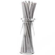 Simply Baked Paper Straw, Silver Quadrafoil, 20cm long, Pack of 25, Colourful & Disposable