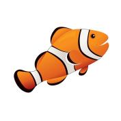 MAGNETIC WHITEBOARD ERASER CLOWN FISH 3-1/2 X 3-1/2
