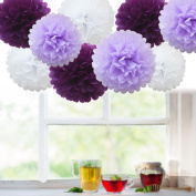 Rzctukltd 9 Pack Mixed Tissue Paper Pompom Pom Poms Hanging Garland Wedding Party Decor