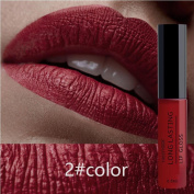 HKFV Amazing Unique Charming High Class Gorgeous Lipsticks Series Cosmetics Women Sexy Lips Matte Lasting Lip Gloss Party