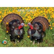 2018 Turkey Wall Calendar, Birds by Silver Creek Press