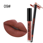 Native99 Matte Liquid Lipstick Waterproof Durable Moisturising Long Lasting Beauty Lip Glosses Lip Liner Set