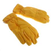 Baoblaze Unisex Winter Warm Ski Gloves, Snowboarding Snowmobile Gloves, Waterproof & Windproof