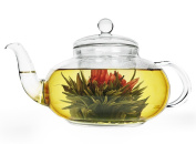 Teapot Set, Stovetop Safe, 53 oz / 1550 ml Stylish Borosilicate Glass Water Kettle with Removable Strainer and Infuser Lid for Flower or Loose Tea