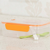 High Capacity Plastic Bento Boxes Portable Outdoor Office Microwave LunchBox With Spoon and Chopstick Food Containers