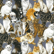 Fat Quarter Cats on Grey Cats Corner Cotton Quilting Fabric 55cm x 50cm Nutex
