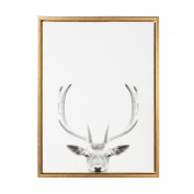 Kate and Laurel Sylvie Deer with Antlers Black and White Portrait Gold Framed Canvas Wall Art by Simon Te Tai