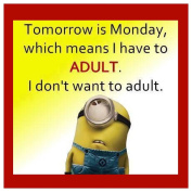 FUNNY MINIONS I HAVE TO ADULT QUOTE COASTER