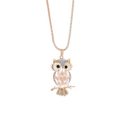 Turkey Charm Necklace For Woman, Fashion Crystal Cute Owl Pendant Sweater Necklace Long Chain Gold Plate Necklace