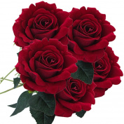 Rose Artificial Flowers,Turkey 5Pcs Fake Simulation Wish Flowers Silk Floral Wedding Bouquet Bridal Hydrangea Decor for Wedding Home Garden Decoration