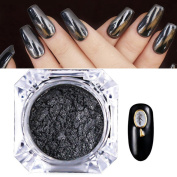 Black Mirror Chrome Nail Powder Shining Manicure Nail Art Pigment Dust Decoration Applicator Instruction