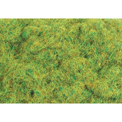 "Peco PPCPSG601 6mm/1/4"" Static Grass, Spring 20g20ml"