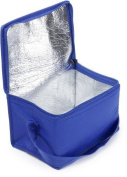 Small cooler bag/cooler box, blue, from Shentian shop and service
