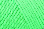 Caron Simply Soft Acrylic Aran Knitting Wool Yarn 170g -9777 Neon Green